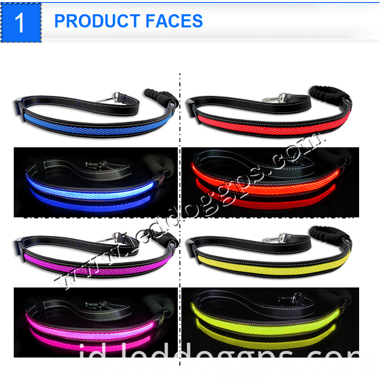 Led Glow Pet Leash