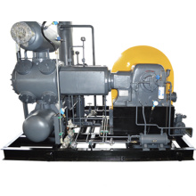 Electronic Industry professional  use High pressure oil free Gas Compressor