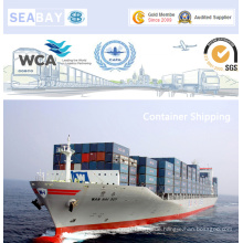 Professioneller Containertransport von China nach Algeciras, Spanien
