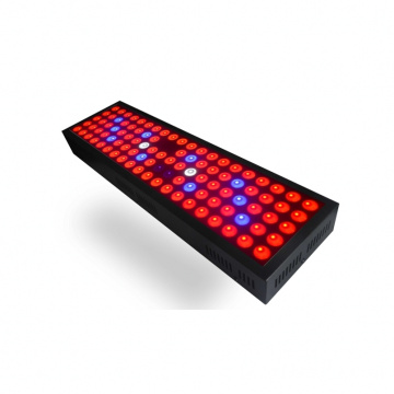 3 tahun garansi SMD 3030 Full Spectrum 65w LED Grow Light