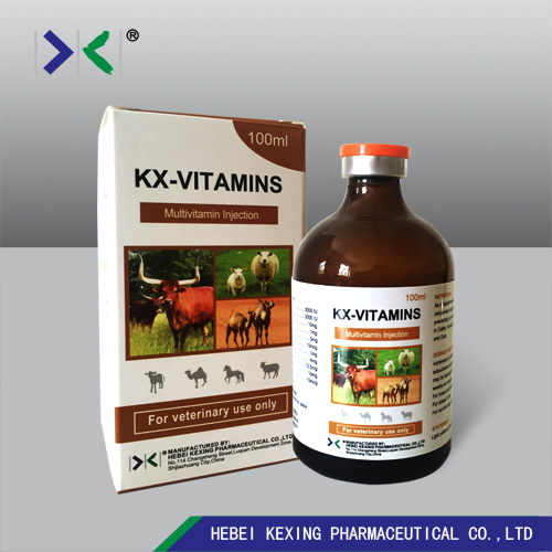Animal Multivitamine 50ml Injection