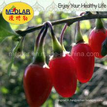 Medlar 100% Organic Goji Berries Goji Powder Goji Juice