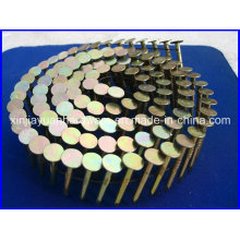 Big Head Galvanized Coil Roofing Nail