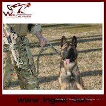 Formation chien sangle ceinture élastique tactique militaire chien laisse Sling