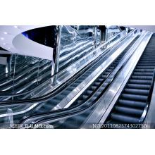 Escalator lourd de haute qualité Otis avec hausses hausses