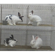 Agriculture Rabbit Cage With Low Price(H type ,alibaba supplier,Made in China)