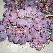Boa qualidade de uva fresca doce vermelho Global