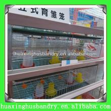 Day Old Chick Cage mit automatischer Ausrüstung
