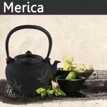 Iron and Brass Japanese Tea Pot Chinese Classical Teapot