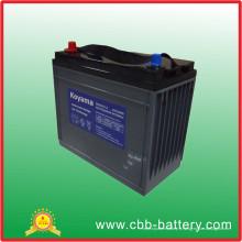 Batterie profonde de gel de cycle des véhicules à moteur de 110ah 12V