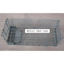 Single Door Animal Cage Traps