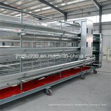 Machine de cage de poulet d'équipement de volaille