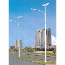 Lumière élevée de lampe de route de rue du temps 30W LED solaire de temps d'éclairage