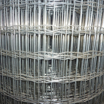 Euro Style Welded Wire Fence Roll