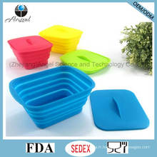 Stockage de nourriture en silicone promotionnel Boîte alimentaire en silicone pliante Sfb12