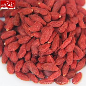 2017 ningxia rouge frais baies de goji export sri lanka