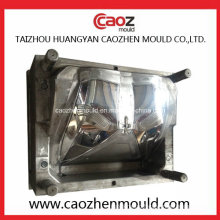 Professional Manufacture of Plastic Car Light Mould in China