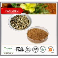 Wholesale Factory Supply 100% Natural Tribulus Terrestris Extract Powder Saponins 90% Protodioscin 40%