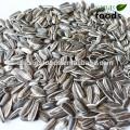Les produits chauds des graines de tournesol à vendre en ligne