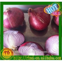 Fresh Red Onion for Malaysia Fresh Onion Red Onion