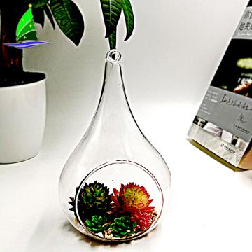 Artdragon Teardrop Hanging Plant Terrarium glass tear droop shaped plants terrarium
