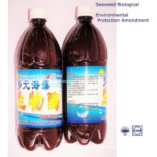Algen Bio-Bakterien Umweltschutz Änderung
