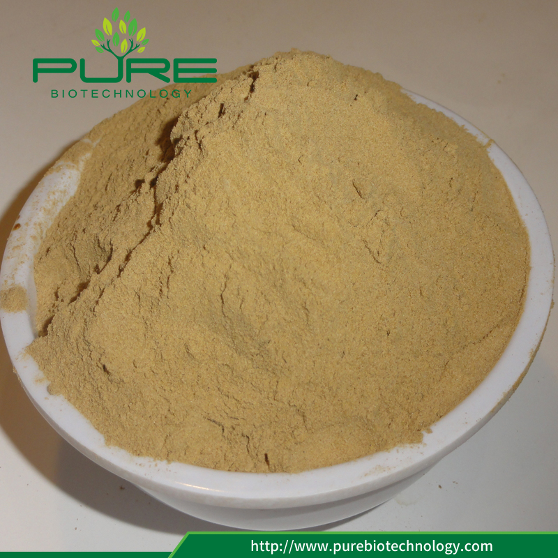 Lower price Tribulus Terrestris Seed Extract powder