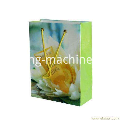 Shopping Paper Bag Eyelet Machine