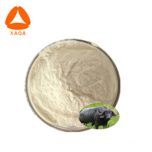 Polvo de próstata bovino secado por aspersión natural 99%