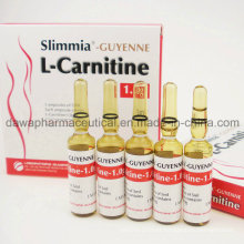 Fat Burning Weight Loss 2.0g L-Carnitine Injection