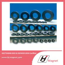 Angepasste Fabrik Ring Ferrit für Magnet-Motor