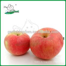 Neue Ernte rote Gala Apfel / chinesische Apfelfrucht / Gala aus China