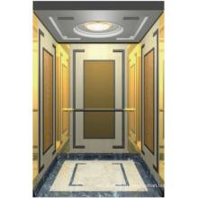 Пассажирский Лифт Лифт Зеркалом Вытравленное Мистер И РСЗО Аксен Гл-Х-012