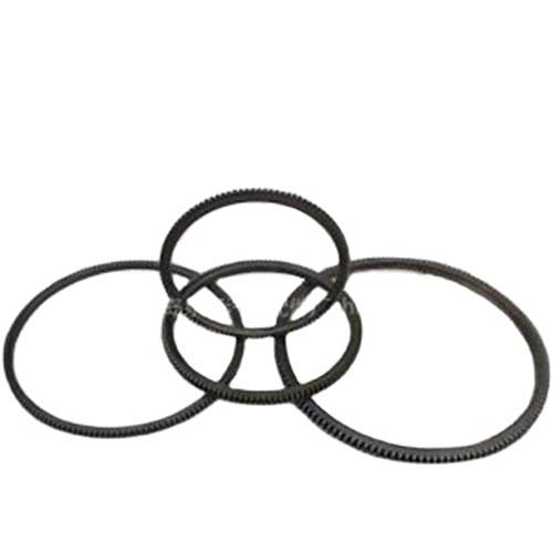 flywheel gear ring 2
