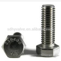 Din931 Stainless Steel Hex Head Bolts