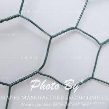 Hähnchen Draht Netting Schutzzaun