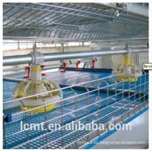 Poultry cages are specially designed for broiler chickens