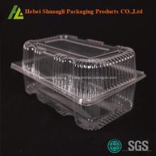 Récipient à gâteaux en plastique transparent avec couvercle à charnière