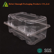 Clear plastic cake container with hinged lid