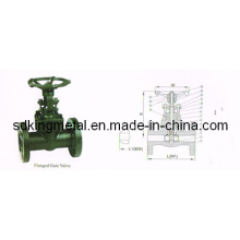 API Forged Steel Flanged End 900lbs Gate Valve
