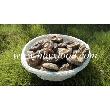 Dried Shiitake Mushroom (Smooth Cap)