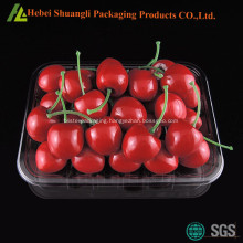 Rectangular plastic fruit packing tray