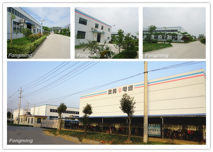 yangzhou fongming cable factory