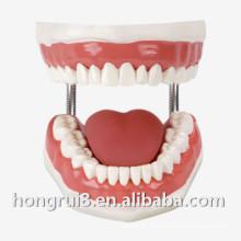 Modelo de Formación de Enfermería Dental Médica