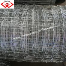 Поставщик Китая из фермы Anping загородки пастбищ (TYF-005)