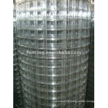 Construction Welded Wire Mesh hot sale