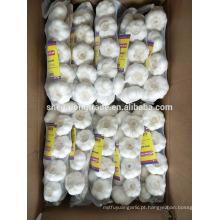 Trança alho branco puro 500g * 20 / carton China Jinxiang alho fresco