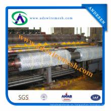 La mejor calidad ISO9001 Hexagoanl Wire Mesh Manufacturer