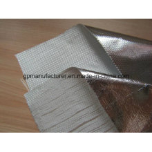 Heat Resistant Fiberglass Cloth/Glass Meshing