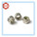 Ss304 DIN985 Nylon Lock Nut/ Stainless Steel Nylon Nut